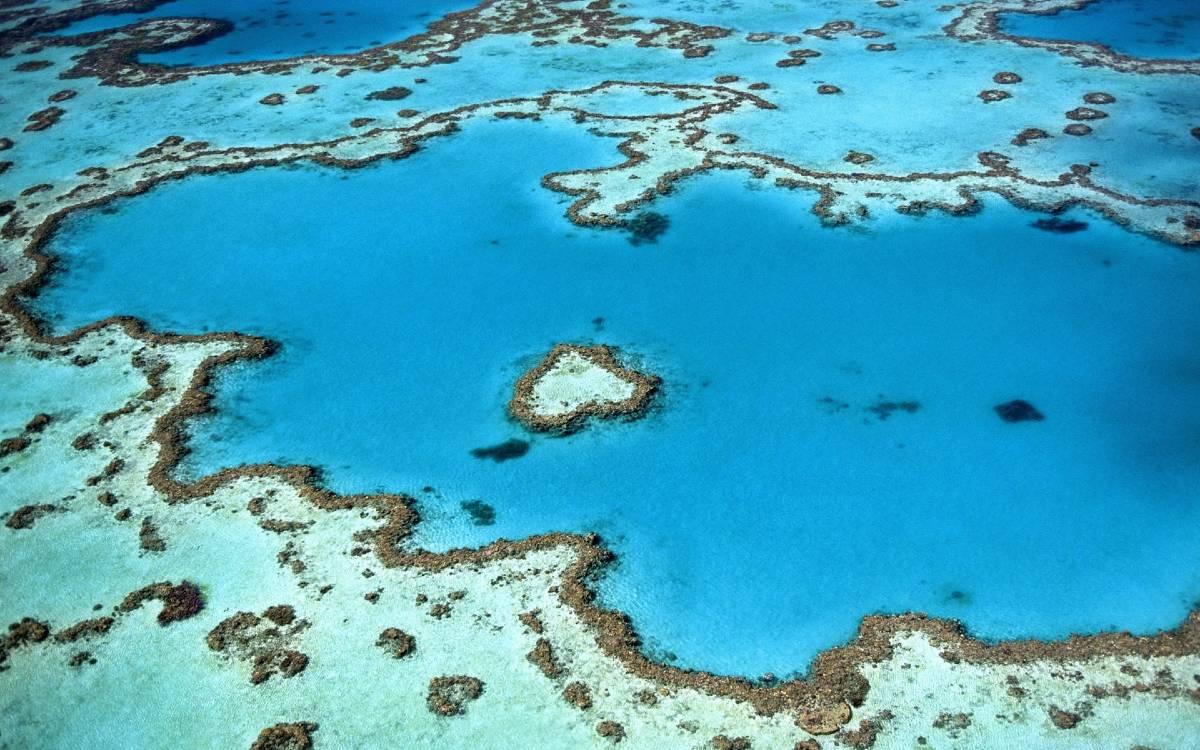Aerial View of Coral Reef